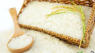 Mua Gạo Giá Sỉ Ở Đâu tại TpHCM, Giá Bao Nhiêu 2021?