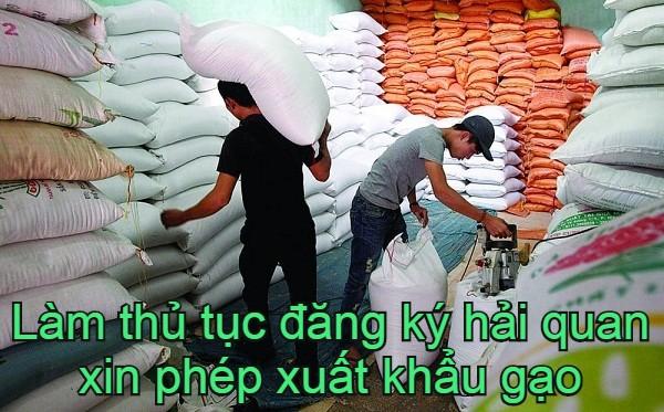 lam-thu-tuc-dang-ky-hai-quan-xuat-khau-gao