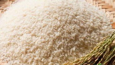 Gạo Bắc Hương Giá Bao Nhiêu 1kg, Mua Ở Đâu Ngon 2021?