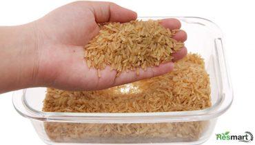 Gạo mầm là gì? Loại nào ngon, Mua ở đâu TpHCM