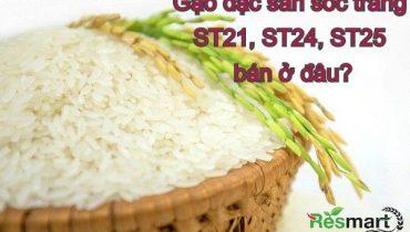 Gạo đặc sản sóc trăng ST21, ST24, ST25 bán ở đâu?