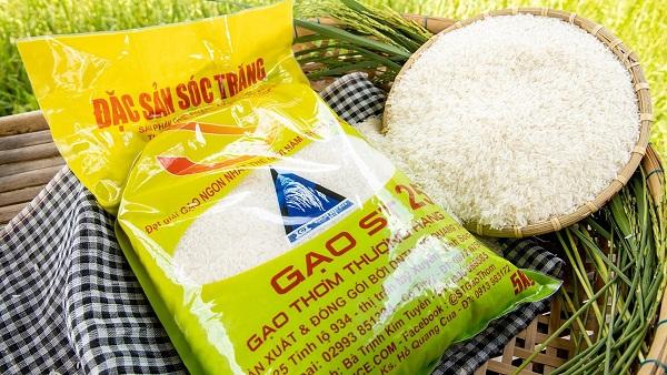 Địa chỉ nguồn cung cấp gạo thơm ngon cao cấp tại TPHCM