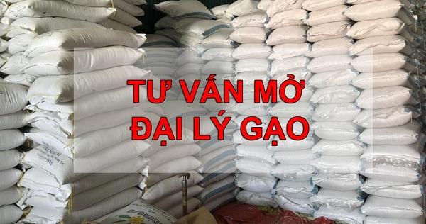 Mở đại lý gạo cần những gì, nguồn gạo ở đâu chất lượng ?