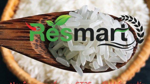 Nguồn cung gạo ST25 xuất khẩu chiết khấu cao – Tổng kho gạo Miền Nam